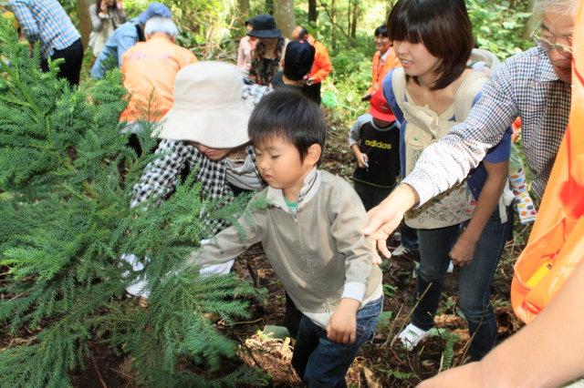 多摩の木ふれあいバスツアー開催のご案内