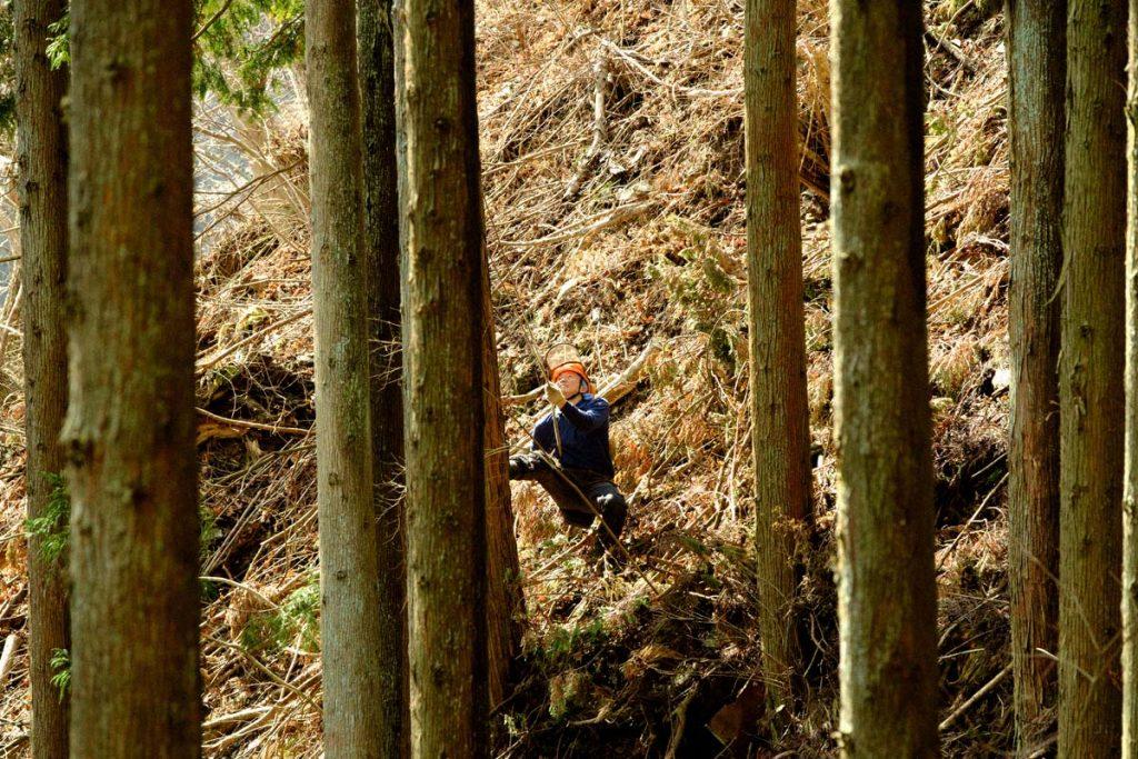 田中林業株式会社